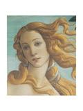 Naissance de Vénus Reproduction procédé giclée par Sandro Botticelli