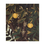 Primavera Giclée-Druck von Sandro Botticelli