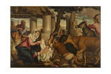 Adoration of the Shepherds Giclee Print by Jacopo Bassano