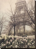 Eiffel in Springtime Stretched Canvas Print by Dawne Polis