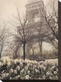 Eiffel in Springtime Stretched Canvas Print by Dawne Polis