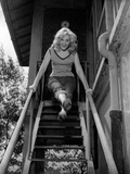 Virna Lisi on a Staircase Photographic Print