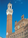 View of Palazzo Pubblico and the Mangia Tower Photographic Print by Unknown Artist