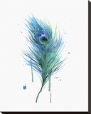 Peacock Feather Teal Stretched Canvas Print by Jessica Durrant