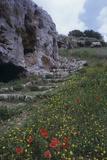 Necropolis in Filipporto, 9th Century B.C. Photographic Print by Artista sconociuto