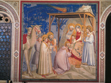 Stories of the Christ the Adoration of the Magi Photographic Print by  Giotto di Bondone