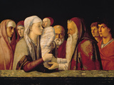 Presentation at the Temple Giclée-tryk af Giovanni Bellini