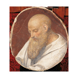 Head of An Old Man Giclee Print by Bernardino Luini
