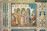Scenes From the Life of Christ Expulsion of the Money Changers From the Temple Giclee Print by  Giotto di Bondone