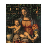 Madonna and Child (Madonna Del Roseto) Giclee Print by Luini Bernardino