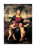 Madonna with Child and the Infant John the Baptist (Madonna of Goldfinch) Reproduction procédé giclée par Sanzio Raffaello