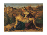 Piet (From the Don Delle Rose Collection) Giclee Print by Giovanni Bellini