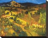Provencal Landscape Stretched Canvas Print by Philip Craig