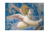 Life of Christ, Angel at the Nativity Prints by  Giotto di Bondone