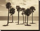 Key Biscayne II Stretched Canvas Print by Dennis Kelly