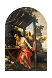 St. Jerome Repentant Print by  Veronese