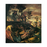 Miracle of the Loaves and Fishes Print by  Tintoretto
