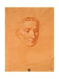 Drawing of a Female Head Posters by Cesare da Sesto