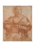 Portrait of a Sitting Woman Giclee Print by Andrea Del Sarto