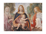 Madonna and Child Prints by Bernardino Luini