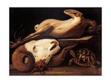 Still Life with Ram Head, Turtle and Plucked Chicken Kunst van Cerano Crespi