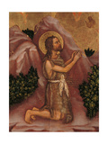 Valle Romita Polyptych, St. John the Baptist Giclee Print by Gentile da Fabriano