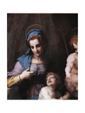 Virgin Mary and Child with Young St. John Giclee Print by Andrea Del Sarto