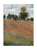Poppy Field Giclee Print by Claude Monet