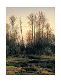 Spring Forest Posters by Ivan Ivanovic Siskin