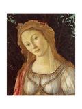 Primavera, Face of Venus Poster von Sandro Botticelli