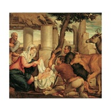 Adoration of the Shepherds Print by  Bassano