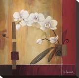 Orchid Lines II Reproducción en lienzo de la lámina por Don Li-Leger