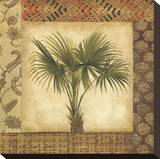 Palm Song II Stretched Canvas Print by Elizabeth Jardine
