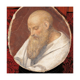 Head of an Old Man Poster by Bernardino Luini