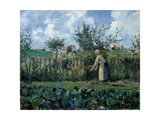 Pissarro Camille, The Cutting of the Hedge, 1878. Palazzo Pitti, Florence, Italy. Detail. Reproduction giclée Premium par Camille Pissarro