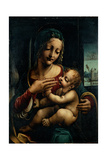 Madonna and Child Poster by Francesco Napoletano