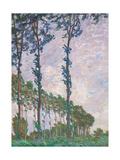 Wind Effect, Series of Poplars Kunst von Claude Monet