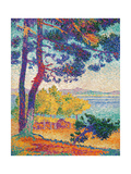 Afternoon at Pardigon Poster by Henri Edmond Cross