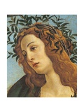 Pallas and the Centaur (Minerva and the Centaur) Giclee Print by  Botticelli