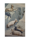 Dream of Joachim, Sheep Prints by  Giotto di Bondone