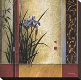 Garden Gateway Stretched Canvas Print by Don Li-Leger