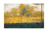 Edge of Wood, Springtime Posters by Georges Seurat