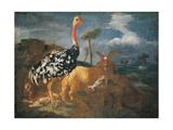 Gazelle, Lady, Ostrich, Ram and Wild Boar Plakater af Master of Palazzo Lonati Verri