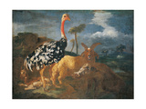 Gazelle, Lady, Ostrich, Ram and Wild Boar Prints by  Master of Palazzo Lonati Verri