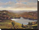 Vineyard View I Stretched Canvas Print by Jennie Tomao-Bragg