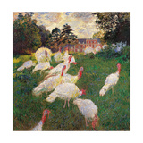 Turkeys Posters by Claude Monet