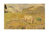 Pascolo primaverile Poster di Giovanni Segantini