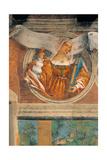 Sibylla Samia Art Print by Lotto Lorenzo