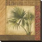 Palm Song III Stretched Canvas Print by Elizabeth Jardine