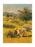 Hay Harvesting Posters by Cesare Bertolotti